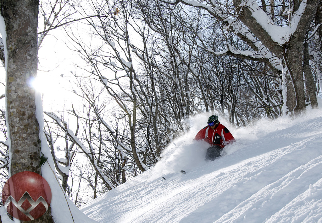 December powder in Niseko